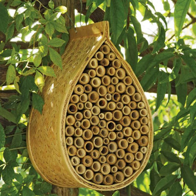 mason-bee-house-1